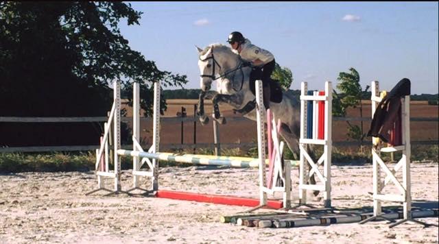 ecuriedelaboissiere77-chevaux-a-vendre-02